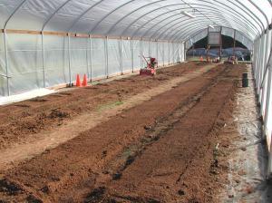 Preparing eight beds inside the hoop house