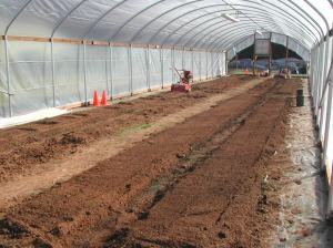 Preparing eight beds inside the hoop house