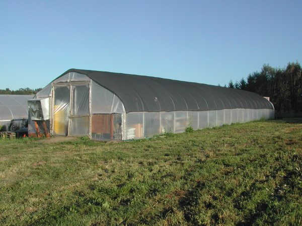 The propagation hoop house today