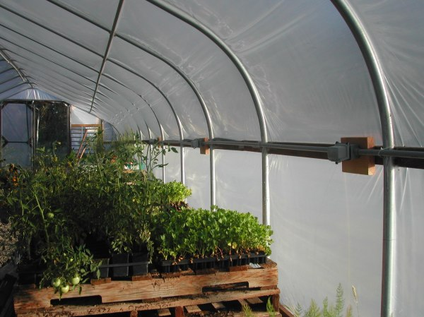Electrical outlets all along the hoop house