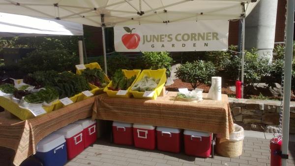 June's Corner Garden at the Salem Monday Hospital Market
