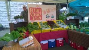 Steven at the Kenton Farmers Market