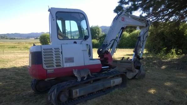 The cats had to check out the equipment