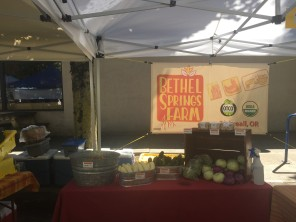 Setting up at the Kenton Farmers Market